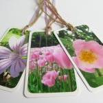 Pink Blooms No.1 gift tag bookmarks..